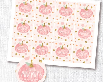 a little pumpkin is on her way - pink pumpkin cupcake toppers - stickers - favor tag -  fall baby girl shower