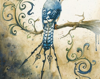 Something Borrowed Something Blue: Fine Art Bluejay Print