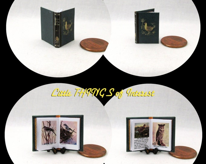 A HISTORY of BIRDS Illustrated  Readable Miniature Book Dollhouse 1:12 Scale Book Ornithology Zoology