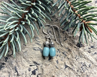 Pale Turquoise Bead Earrings