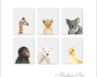 Animal Nursery Decor | Zoo Nursery Decor | Baby Nursery Print Art | Jungle Nursery | Jungle Nursery Art | Baby Animal Prints |Safari Animals