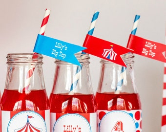 Carnival Party Straw Flags with Editable Text, DIY Printable Carnival Drink Flags, Kids Carnival Party Printable, Carnival Party Straw Flags