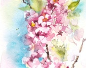 Original Watercolor Painting of Pink Blossoms, Floral Watercolour Art