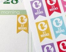 Pregnancy Set (RAINBOW) Stickers for Erin Condren Planner, Filofax, Plum Paper