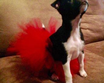 Dog Tutu, Teacup Tutu, Puppy clothing