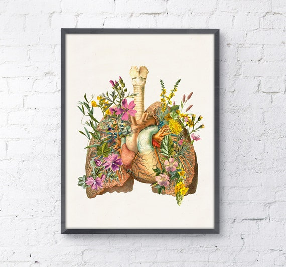 Christmas Sale Lungs and heart with flowers Print wall art Doctors gift Human anatomy print Science student gift- Anatomy prints SKA099WA4