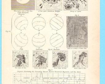 Antique Astronomical scientific illustration - The sun