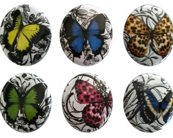 Pretty Butterfly Fridge Magnets - Set of 6 Magnet Set - Refrigerator Magnets, Perfect Hostess, Housewarming Gift - Home Decor