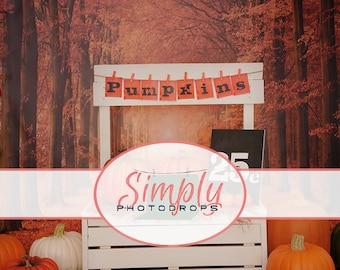 Vinyl Backdrop,FALL PUMPKIN STAND , Photography Backdrop // Simplyphotodrops Premium Vinyl Backdrops