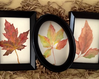 Fall Leaf Painting Set - Pack of 3 Mini Watercolor Paintings, Autumn Themed Paintings, Great as Fall, Thanksgiving, Halloween Decor