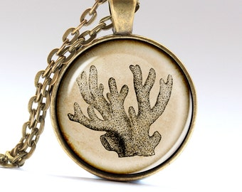 Corals Necklace, Reefs Pendant, Sea tree jewelry, Necklaces Pendants Jewellery LG568