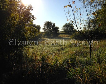 Summer Morning, Instant Download, 11x14, Fine Art Digital Photo, Digital Printable, Photography, landscape