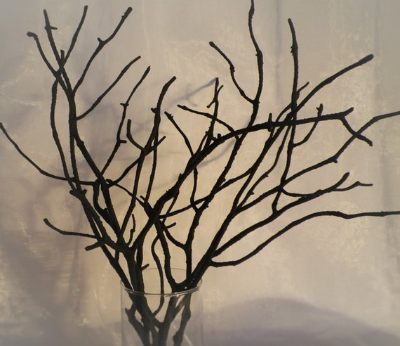 Tree Branches Set Of 7 Black Painted Wood By Ligitasworkshop