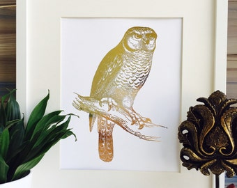 "Shop ""owl"" in Art & Collectibles"