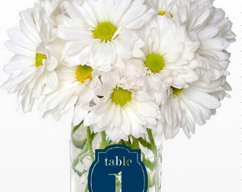 Mason Jar Table Number LABELS, custom created in the color of your choice!  Wedding reception, seated dinner, casual chic!