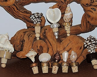 Eco Friendly Repurposed Decorative Sea Shell Bottle Stoppers and Wood Boxes at 25 Dollars or Less