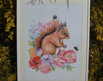 Red Squirrel print in different sizes to suit woodlands creature range