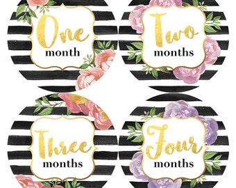 Watercolor Floral Stripes Monthly Baby Stickers, Baby Girl Monthly Stickers, Monthly Baby Milestone Stickers, Baby Shower Gift