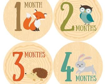 Baby Month Stickers Woodland, Baby Milestone Stickers, Baby Boy and Girl, Monthly Stickers, Baby Shower Gift