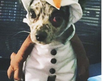 Disney Inspired Olaf Costume, Disney Inspired Olaf Dog Costume