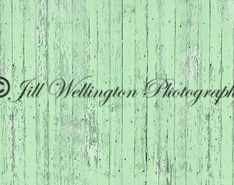 Pale Green Barn Wood wall background backdrop for photography