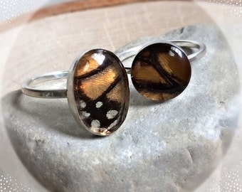 Real butterfly Wing Jewelry - Sterling Silver Monarch Ring