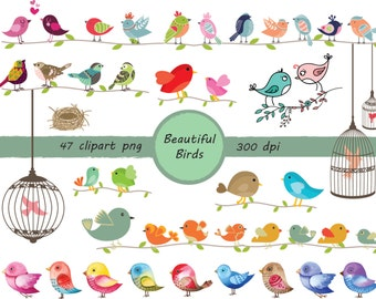 Beautiful Birds images - Birds clip art -  instant download digital file - PNG