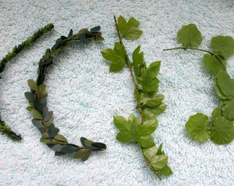 Miniature 'Foliage' Leaves etc... and suit Rockery/Indoor Floral Project