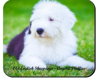 "Old English Sheepdog mousepad - ""Angelic Fluffies"""