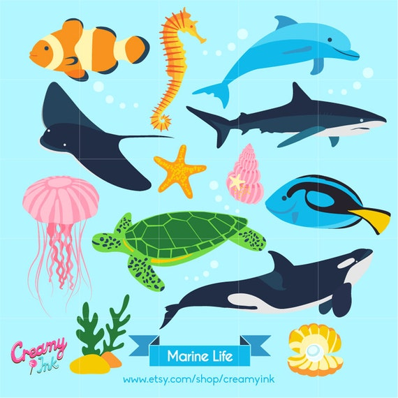 Ocean Digital Vector Clip art / Marine Life Clipart Design