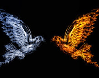 Twin Flame Question Psychic Reading Same Day Email OR Within 24 Hours In PDF Format