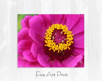 Pink Flower Art Print | Your Royal Pinkness! Pink Fine Art Print and Flower Wall Art.