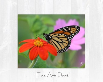 Butterfly Wall Art, Monarch Butterfly, Flower Wall Art, Butterfly Print, This Is Tasty!
