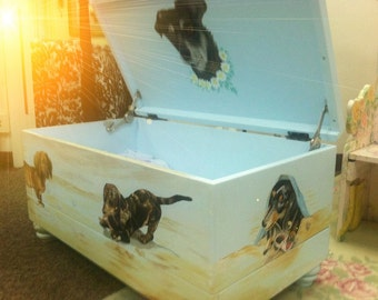 A Toy Box with Your Pets Portraits