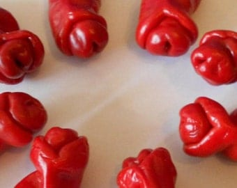 Hot Pepper- Red Peter Pepper- embarassingly funny x-rated hot pepper- 25 seeds