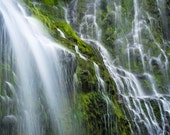 Matted Photo Print Proxy Falls Waterfall Oregon Pacific Northwest Green Forest Water Moss Landscape Nature Photography