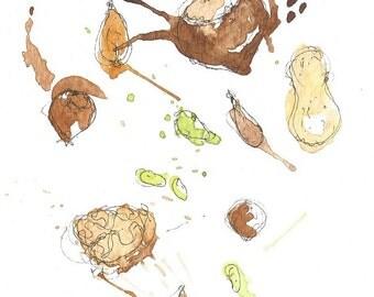 nuts art print 6x4