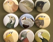 One Inch Magnet Set - Vintage Bird Images - One of a kind set