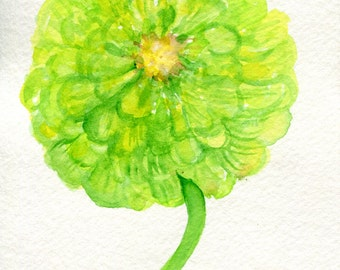 Zinnia watercolors paintings original, flower painting. small floral wall art, original watercolor painting of green zinnias 4 x 6 flower