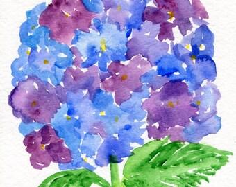 Purple Blue Hydrangeas Watercolor Painting Original 5 X 7 Flower Art Small
