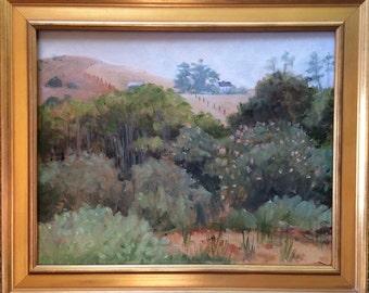 Original Plein Air Oil  California Landscape Painting, Point Reyes by Ann Miller