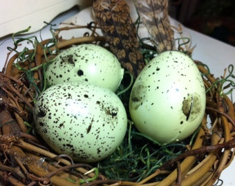 Large nest with eggs and feathers
