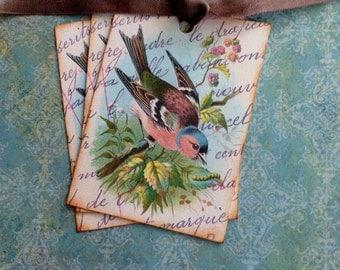 Bird Tags - Vintage Bird Tags - Vintage Chaffinch Bird Tags, Pink, Aqua - Set of 3