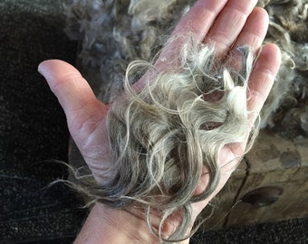 Lady - 5 Pounds, 8.5 ounce RAW Mohair - W1