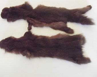 """Vintage animal pelts two color matched real fur presumed mink 11"""" and 12"""" from nose to rear toe"""