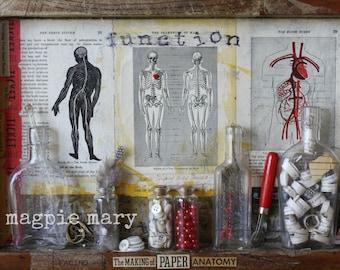 The Making of Paper Anatomy. Original Mixed Media Shrine. 16x11