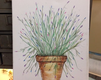 Lavender in watercolor pencils and ink on 8x10 canvas,original signed art, French, experiment, FREE SHIPPING