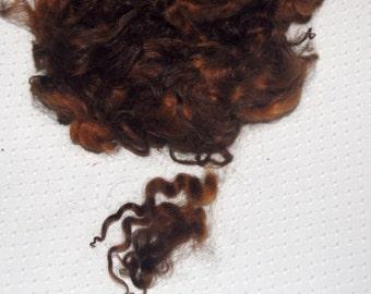 Karakul Sheep Wool Locks for Spinning Felting and Doll Hair, Doll Wig, Hand Dyed shades of Medium Brown and Dark Brown 1 oz.