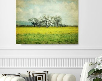 """Landscape Canvas Art - Trees in Meadow - Landscape Photography - Yellow Green - Oversized Art  """"Sunglow"""""""