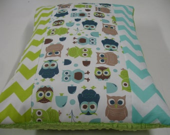 Modern Owls Strip-Style Decor Pillow Sham With Minky Back 14 x 20 READY TO SHIP On Sale